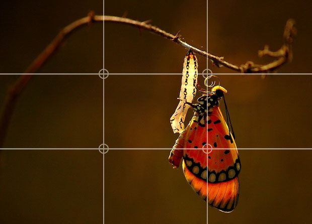 Rule of Thirds in Videos: Good Things Come in Threes Part II