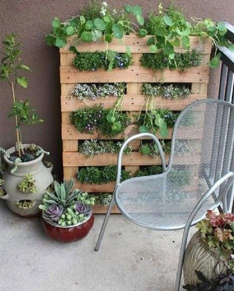 Another inspiration for my garden.