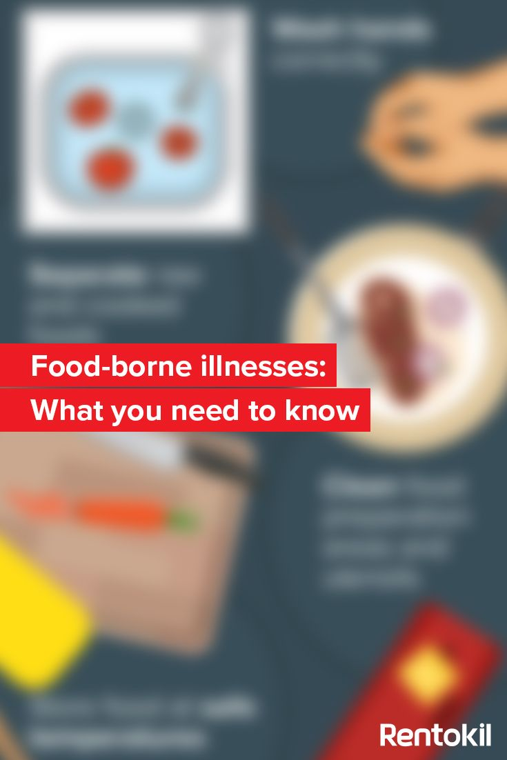 foodborne illness paper Foodborne ilness for salmonella is somewhat controversial some doctors recommend using antibiotics to treat the disease, while others feel that antibiotic use only prolongs the time that the bacteria will be carried (salmonella poisoning, nd) prevention of salmonella poisoning is relatively easy.