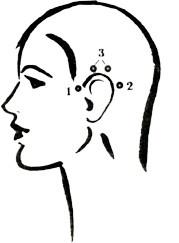 Для оживления мышц лица попробуйте немного пошевелить ушами. Это простое упражнение тонизирует очень важные для подтяжки лица мимические мышцы, главные провокаторы морщин. Далее нужно найти около ушной раковины и активизировать три узловые точки.