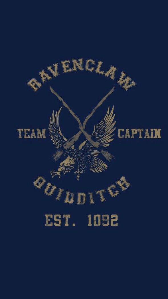 Ravenclaw Quidditch iPhone 5 wallpaper