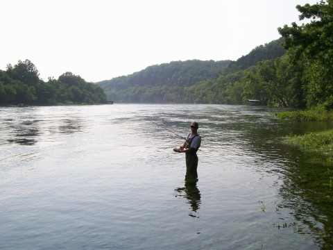 17 best images about fishing for trout in the south on for Fishing resorts in arkansas