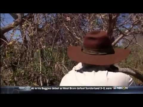 Man Shoots An Elephant In The Face On NBC Sports Network                !!!!!!!!!! NBC SUCKS!!!!!!!!!!