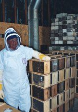 What Should I Be Doing With My Bees This Month?: How to do a divide an over wintered colony