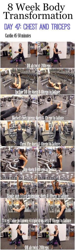 8 Week Body Transformation (Week 7, Day 47: Chest and Triceps)