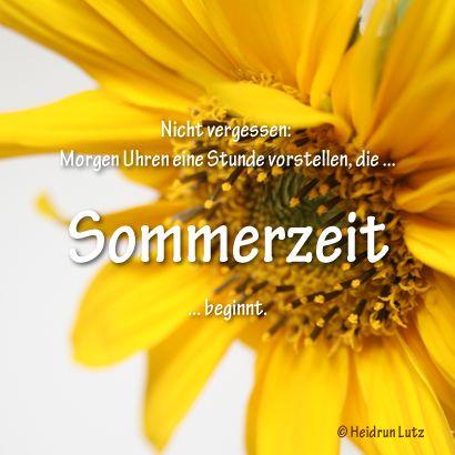 #Umfrage: #Sommerzeit - Ja oder Nein? - Uhren umstellen, #Sonnenblume, gelb // 365tagegelb.wordpress.com