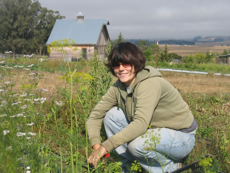 Canvas Ranch blog An easy blog about organic farm life in Two Rock Valley California. Oh, and did I mention it produces Farro and sells it whole grain?  Andrea