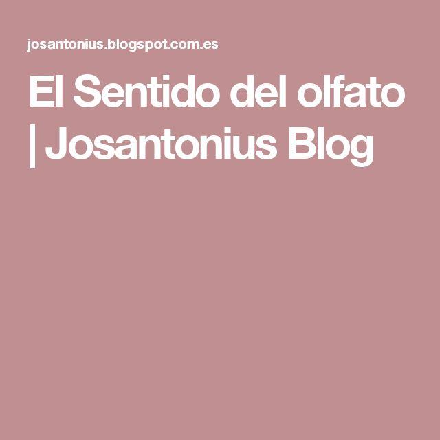 El Sentido del olfato | Josantonius Blog