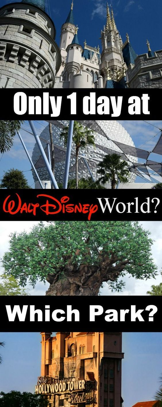 Which #Disney park would you visit if you just had one day?  Request a quote for your next vacation from Destinations in Florida at  http://destinationsinflorida.com/pinterest