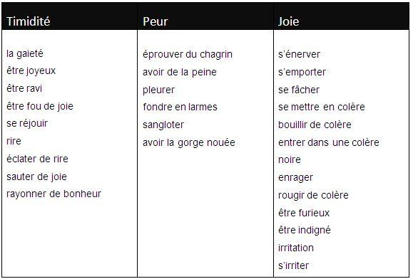 Le vocabulaire des sentiments et des émotions - learn French,vocabulary
