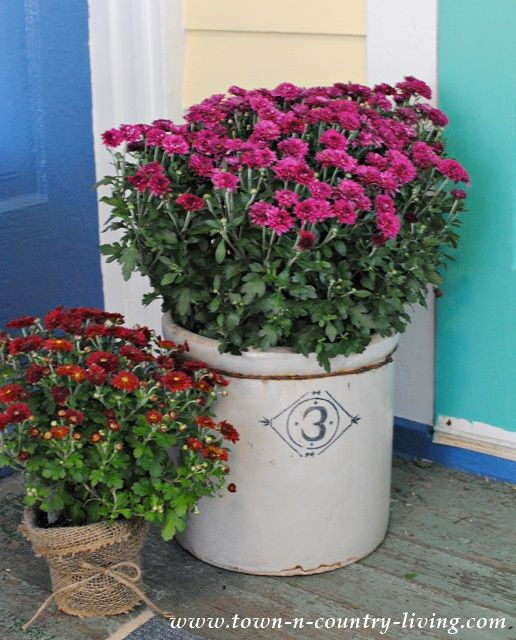 Place mums in a stoneware crock for instant country fall decorating style.
