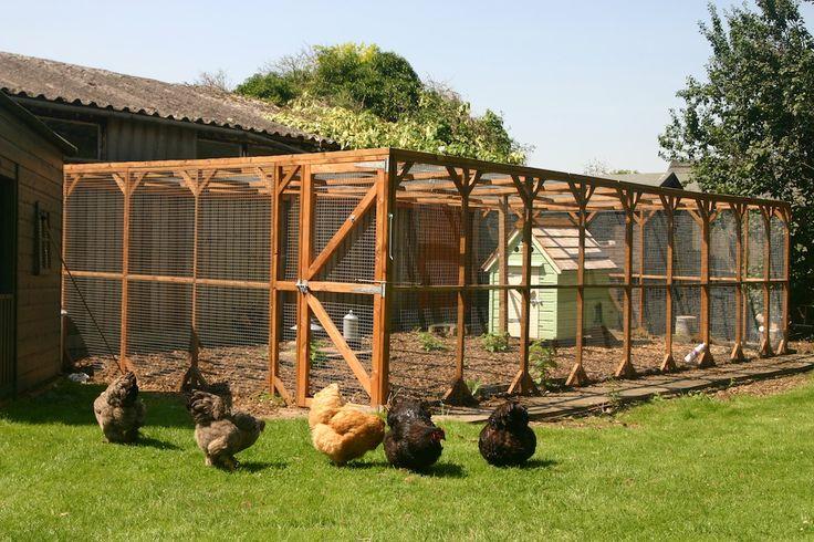 Free range chicken housing woodworking projects plans for Free range chicken coop plans