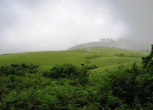 vagamon-green-meadows