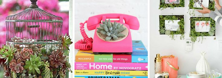 Ciao,+io+amo+la+natura+e+a+me+bastano+le+succulente+per+fare+un+giardino.+Metterei+ovunque+piantine+e+piccole+collezioni+di+cactacee.+Ho+cercato+su+Pinterest+delle+idee+carine+per+creare+degli+angoli+giardino+nelle+nostre+casette.+Non+angoli+classici+però:+qui+dal+Cavolo+è+bandita+la+noia!+Ho+scovato+per+te+cachepot+simpatici,…