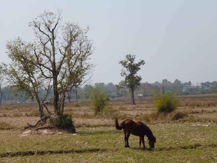 Vientiane :)