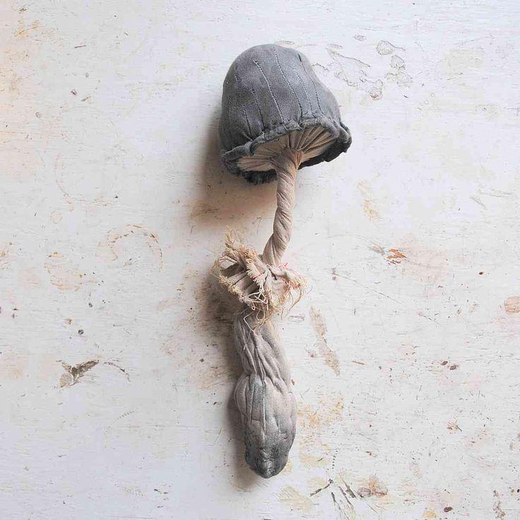 mr. finch cloth mushrooms: Fiber Paper Fabrics Textiles, Mister Finch, Plants Specimen, Mushrooms Toadstool Soft, Textiles Mushrooms, Artycrafti Mushrooms, Arti Crafty Mushrooms, Shiny Squirrels, Sculpture Fairyt Plants