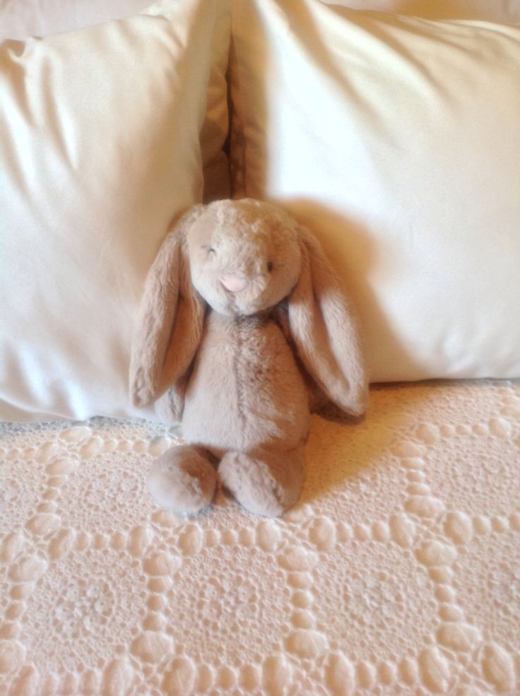 ELMS-HAVEN. Maggie Taylor's house & garden. A flopsy bunny sits comfortably on our bed.