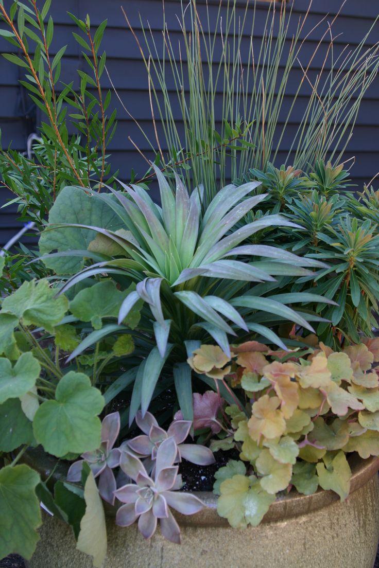 Container gardening ideas for full sun - Full Article Http Ourfarmjourney Com Directory Sun Gardengarden