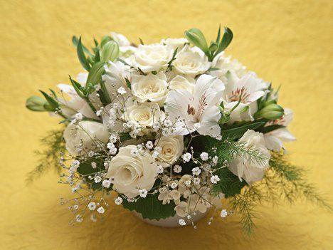 Rózsaszínü rózsa csokor...,Fehér rózsabimbó...,Csillogó sárga rózsák...,Kaméleon Rózsa,Sárga Rózsa,Nagyon szép színe van...,Hófehér csokor...,Sárga Csoda...,Szűrt fényben...,Szívbe ágyazva..., - viktoria02 Blogja - Állatok,Angyalkás,Aranyosképek,Barátaimtól kaptam,Barátság,Érdekességek csokiból...,Fantázia,Gyerekképek,hi5-ről kaptam,Húsvét,Jó éjt,Kedvenc zeném,Mókás dolgok,Művészet,PerfSpot-ról kaptam,Rózsák,Sellők,Sorválasztók, díszek,Szép képek,Szép…