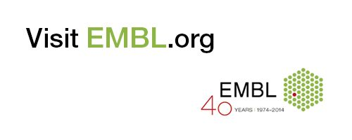 The European Bioinformatics Institute (EBI) is part of EMBL, Europe's flagship laboratory for the life sciences. EMBL-EBI provides freely available data from life science experiments covering the full spectrum of molecular biology.