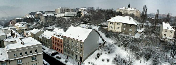 Zimní Nemocnice Na Bulovce