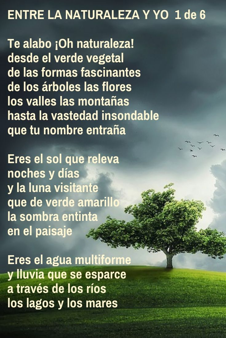 Entre la naturaleza y yo (1 de 6) Poema de Juan Rodes ...