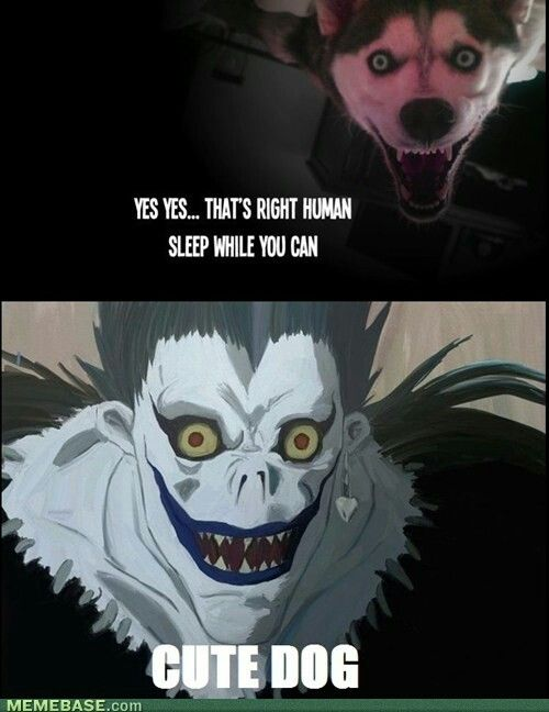 I think I'm the only one here that thinks both the dog and Ryuk are cute...Seriously, that dog is adorable!!
