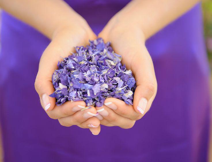 Purple // Ultra Violet Pantone - Amethyst delphinium confetti. Purple natural petal confetti