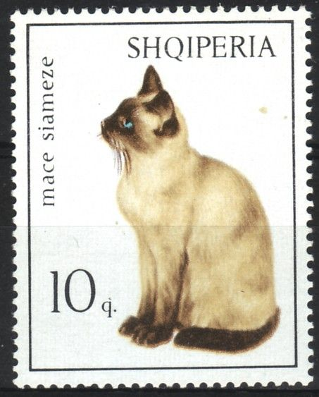 "Albania -  ""what does SHQIPERIA mean?"" I just looked it up online & note this quote from www.thefreelibrary.com: ""Since the sixteenth century Albanians have called their country Shqiperia (using this on postage stamps): Land of the Eagle."""