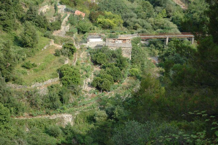 Torri Superiore Frazione di Ventimiglia (IM) - uno scorcio di Val Bevera