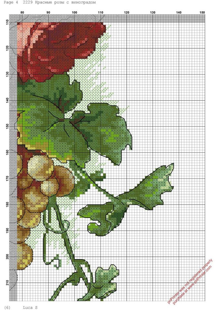 rosas-rojas-5.jpg (1124×1600)