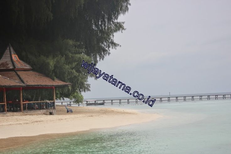 PT. Wijayatama wisata Kantor pemasaran pulau seribu Phone : 021-68274005   80880526   80889688 mobile : 08159977449 Email : pulauseribu@wijayatama.co.id