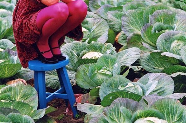 """Ruth Huimerind """"Kablis kapsaste keskel"""" / """"Among the Cabbage in Kabli"""" 2007"""