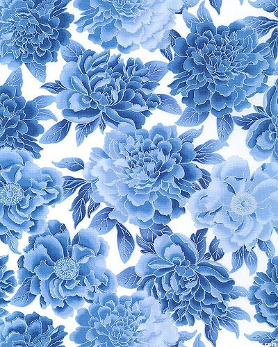 Royal Peony White/Silver Blue flowers background