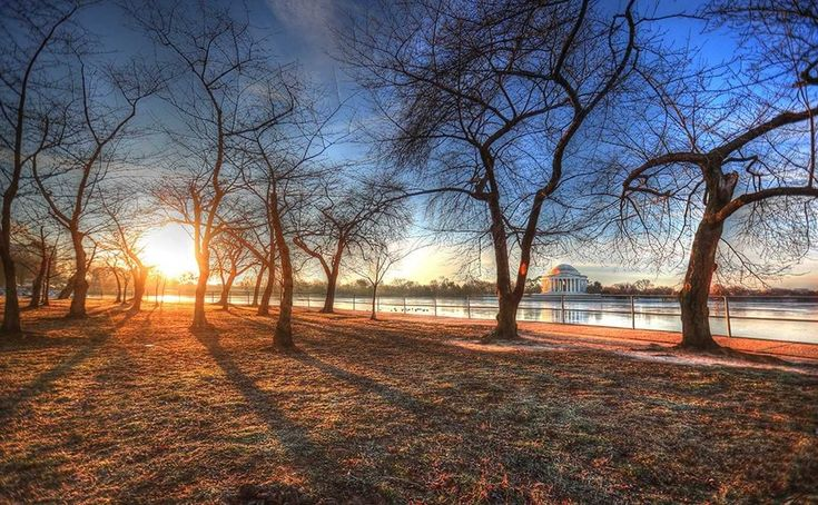 D.C.-area forecast: Seasonable today, then noticeably warmer late week, but possibly wetter too