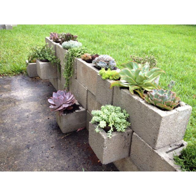 Succulent cinder block garden