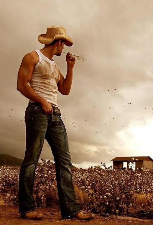 17 best images about cowboy up on pinterest legends cowgirl and