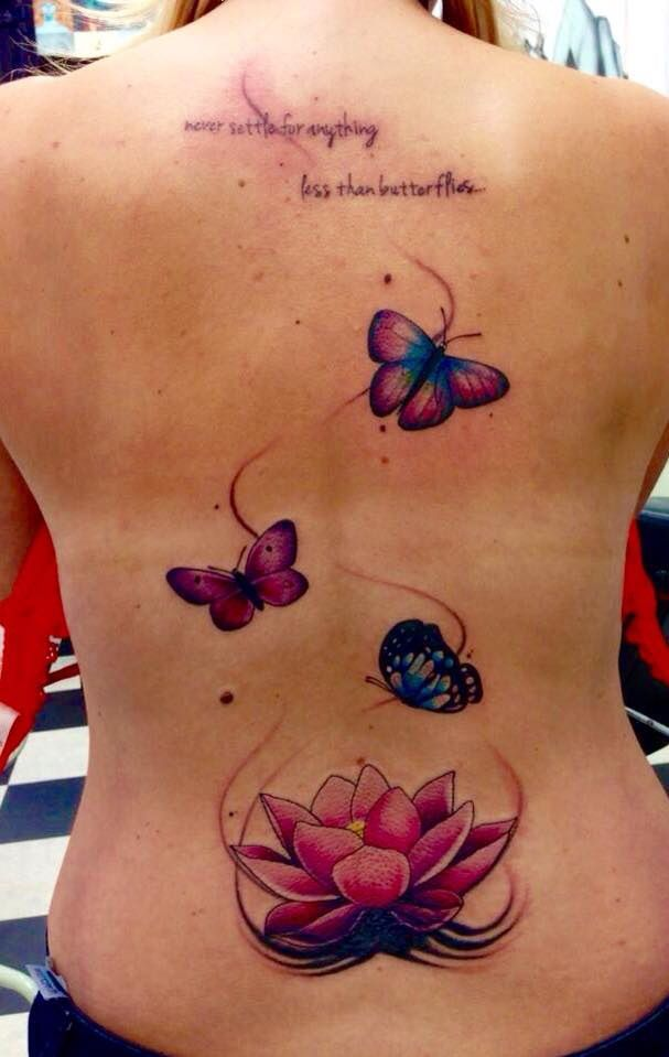 Lotus & butterfly