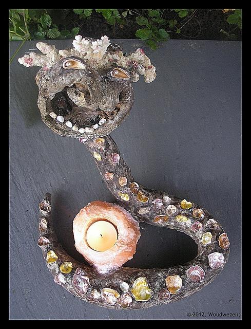 woudwezens koraal,hout by Woudwezens, via Flickr