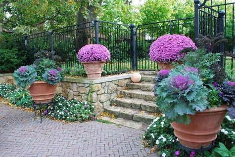 Mums and ornamental kale - gorgeous!: Colors Combos, Fall Containers, Fall Decor, Fall Recipes, Stones Wall, Rose Pink, Fall Kale Decor, Ornaments Kale, Ornaments Cabbages