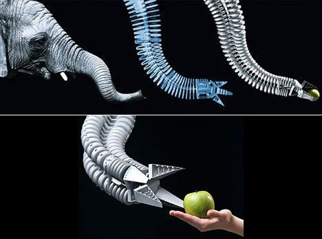 animal-biomimicry elephant trunk robot arm---Looks like Doc Oc's arm from Spiderman!
