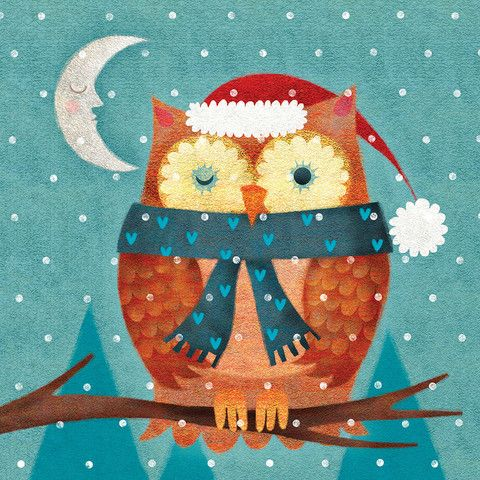 Winking owl Christmas cards - The Royal Marsden Cancer Charity Shop:
