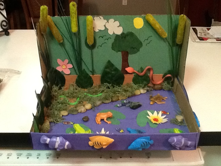 Freshwater ecosystem Craft ideas Pinterest