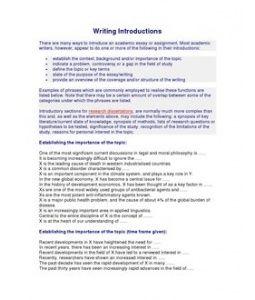 Academic essay literature