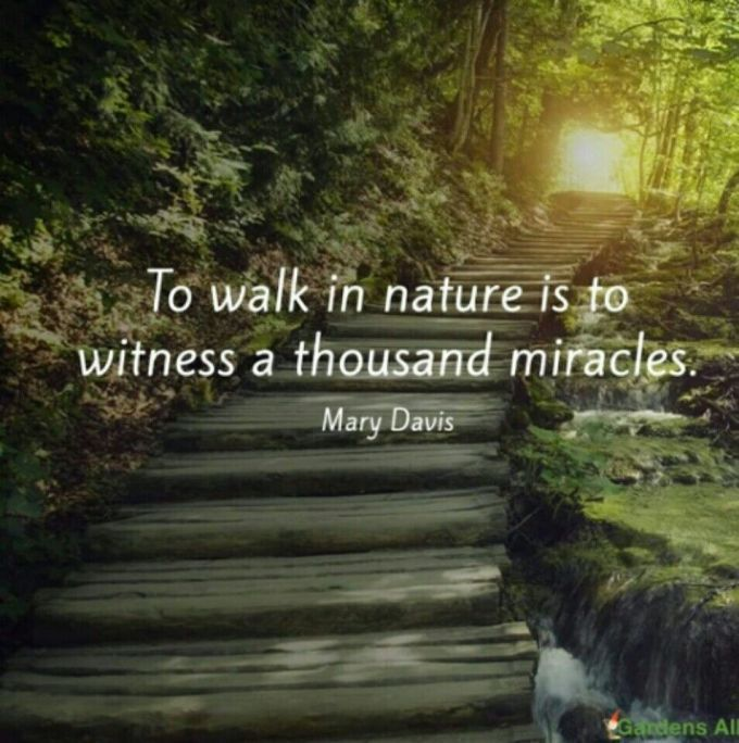 Famous Quotes Nature Love Nature Quotes Nature Quotes Inspirational