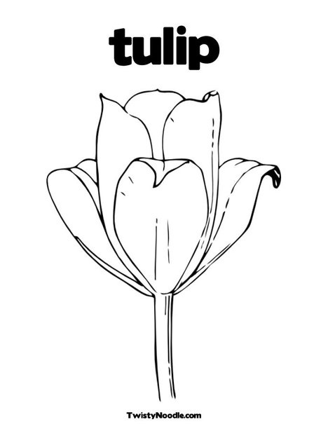 Coloring pages tulip this will