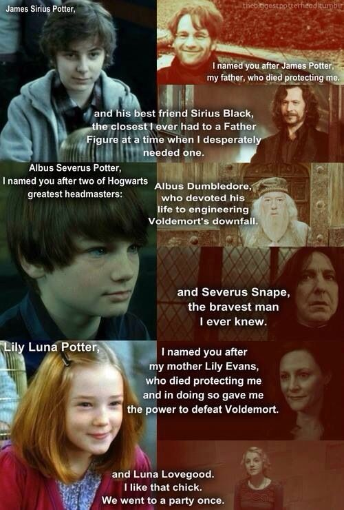 James Sirius Potter - Albus Severus Potter - Lily Luna Potter    -Luna helped him not to care about the people who hated him anymore. And she was the best friend of Lily Lunas mother. Finally Ginny got to pick a name