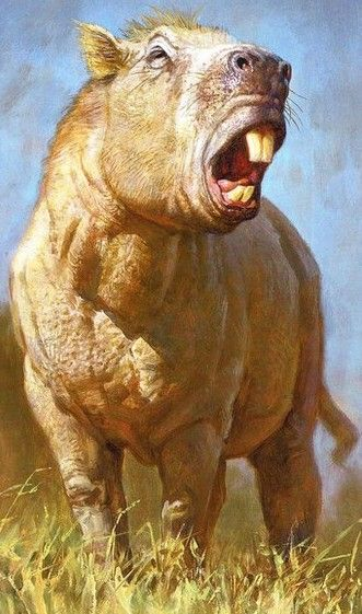 Josephoartigasia monesi  aka Ratzilla... the biggest rodent that has ever lived looked like a big guinea pig, five feet tall and three feet long, weighed a ton, and lived in South America between 2 and 4 million years ago.