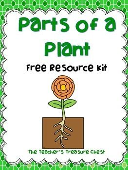 This little resource kit contains plant vocabulary words ABC order, label the plant, and plant life cycle order printable!