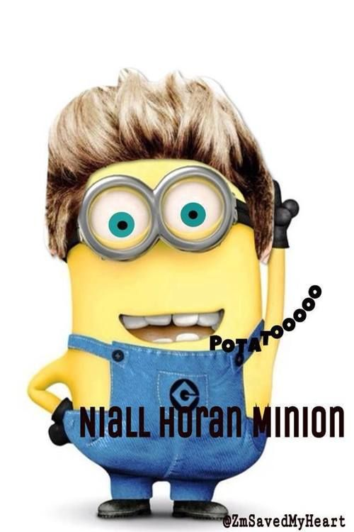 One Direction's Niall Horan Minion - Bestiphone5caseshop @ tumblr